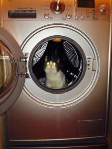 stollen in a laundry machine