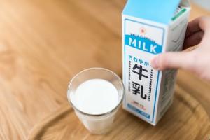 人間用の牛乳をそのまま与えるのはNG